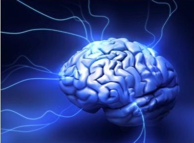 andrey-volodin-brain-image