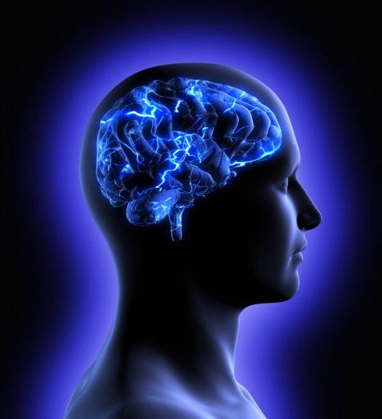 quantum-brain-01