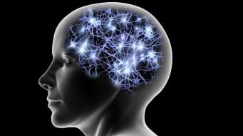quantum-mind-power