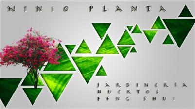 Ninio-Planta-postcard-HD-01